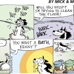 Husky vs Water