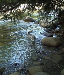 Wordless Wednesday: Hiking