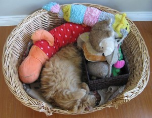 Rocco's Toy Basket