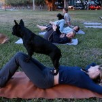 Why Do Doga? Practicing Yoga With Your Dog.