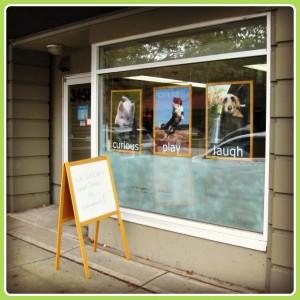 Vancouver Doggie Daycare: Dogcity