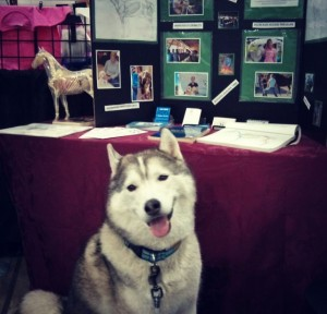 The Pet Lover Show