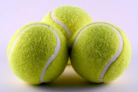 Why Tennis Balls Are Bad For Your Dog