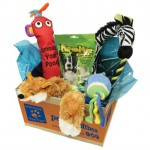 Pet Gift Box Review