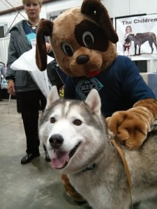 The Pet Lover Show 2015
