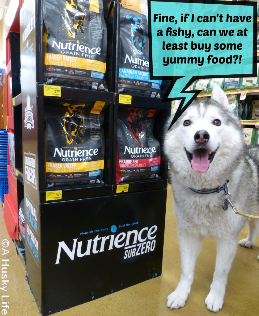 Visit PetSmart® to Find the #SubZeroDifference