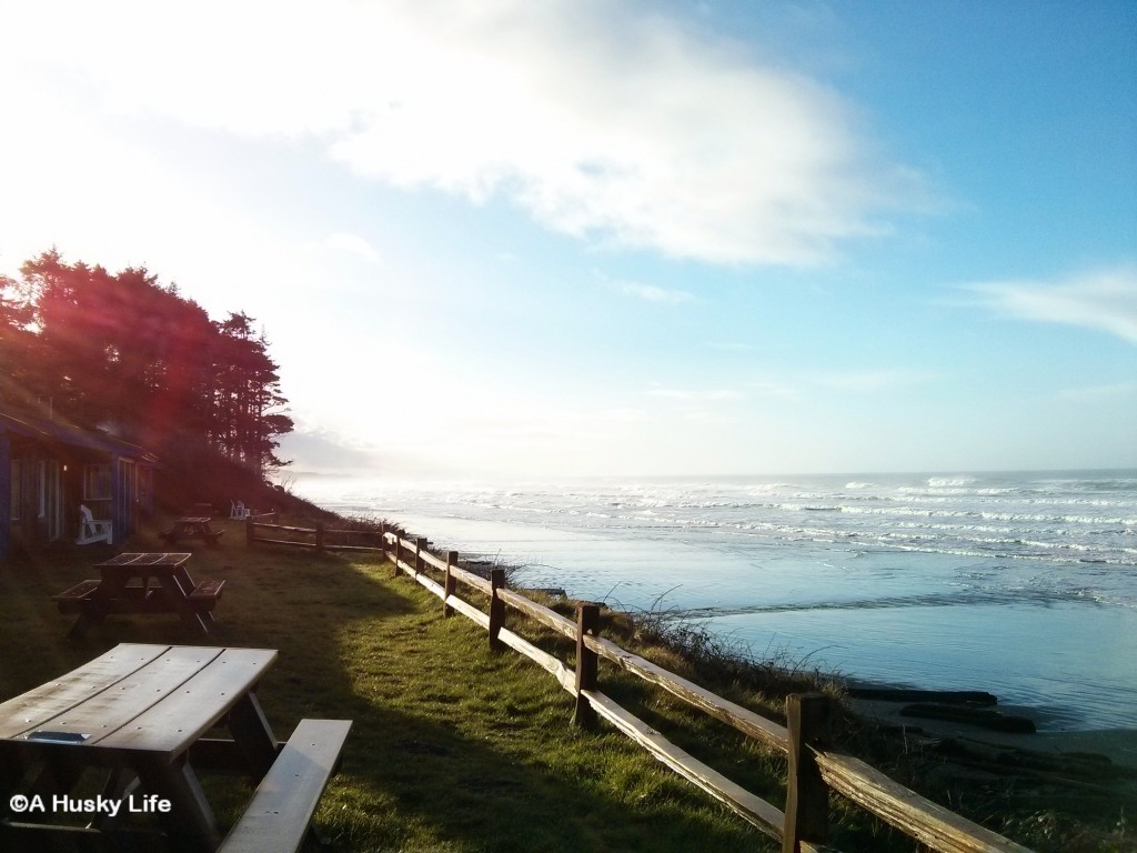 View from the cabins at Kalaloch Lodge.