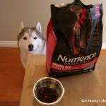 Visit PetSmart® to Find the #SubZeroDifference