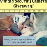 Announcing the Vimtag Security Camera Giveaway Winners