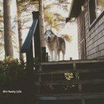 Wordless Wednesday: Cottage